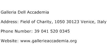 Galleria Dell Accademia Address Contact Number