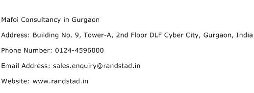 Mafoi Consultancy in Gurgaon Address Contact Number