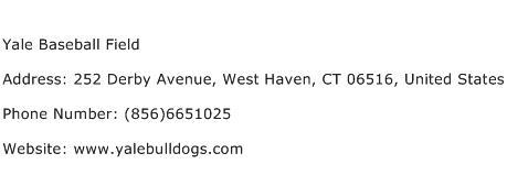 Yale Baseball Field Address Contact Number